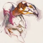 "Vulture o/c 48"" x 56"" 2014"